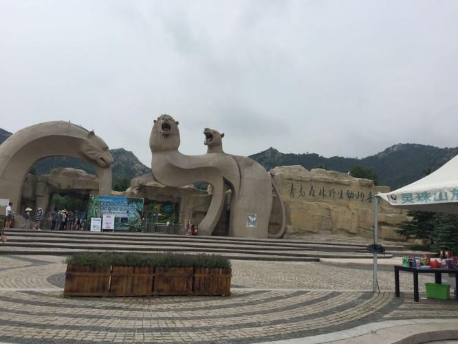 我和儿子的青岛野生动物园之旅