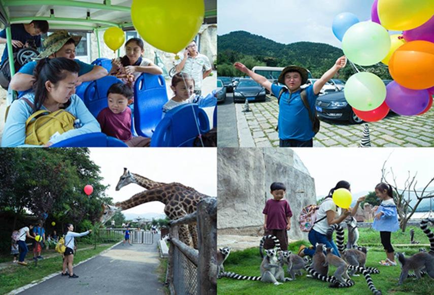 亲子动物园参观