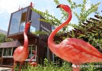 青岛森林野生动物世界为你专属定制——毕业季