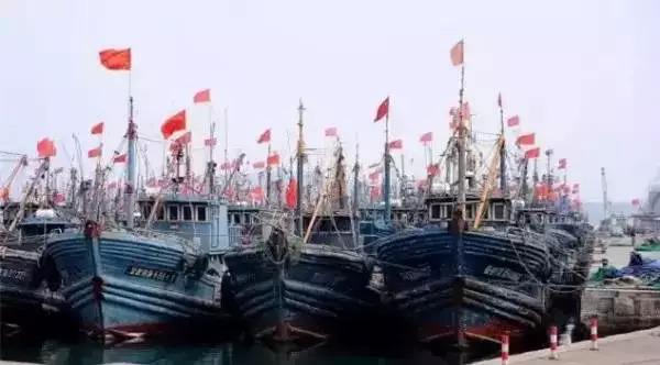 青岛开海去哪买海鲜_有哪些码头